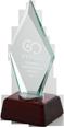 Pioneer Distributor Award