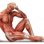 Definicja i znaczenie fizjoterapii
