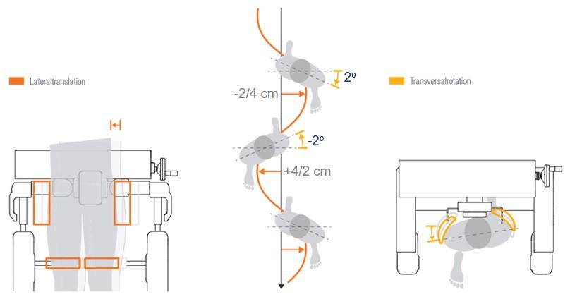 wykres wychylenia podczas terapii robotem Lokomat