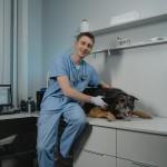 zoofizjoterapeuta i pies