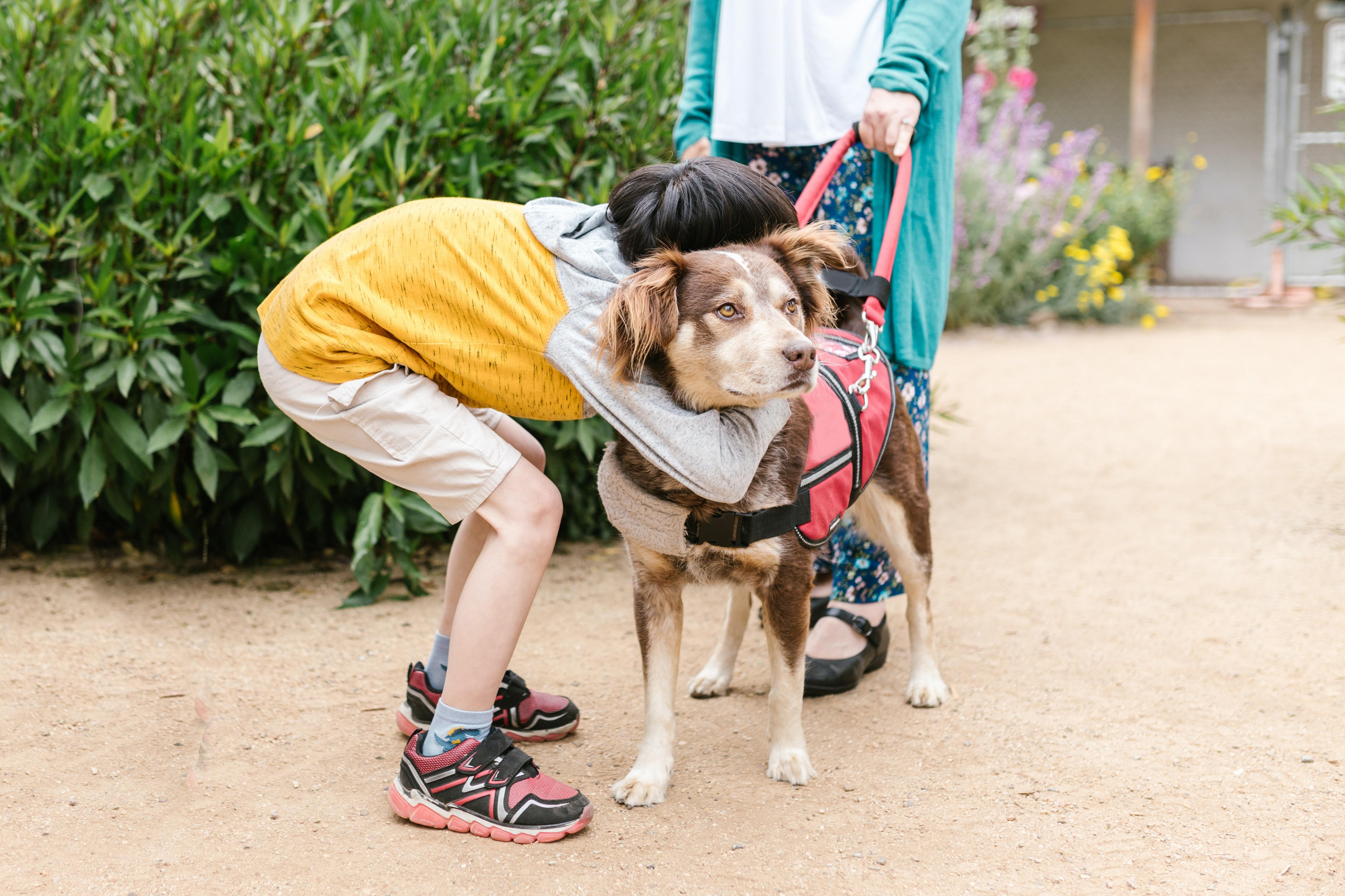 pies przytulany przez dziecko
